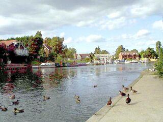 Thames at weybridge
